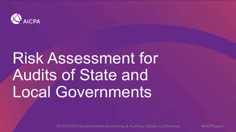 Risk Assessment for Audits of State and Local Governments