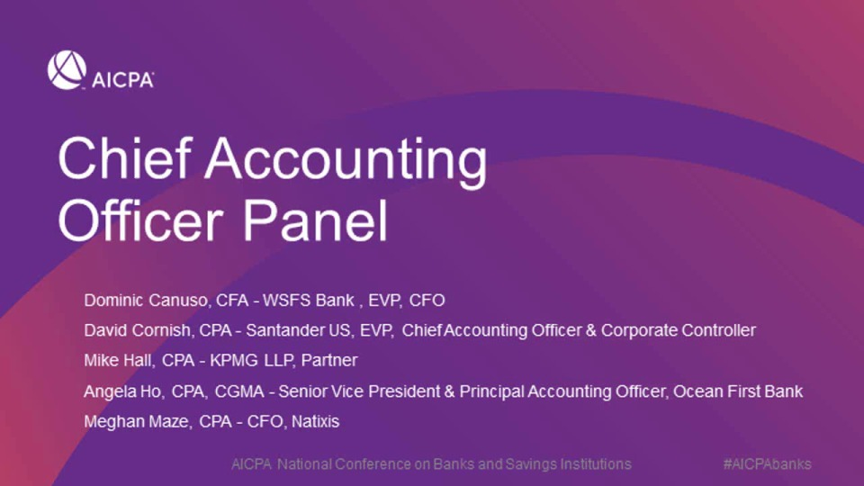 Chief Accounting Officer Panel