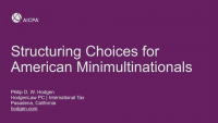 Structuring Choices for American Minimultinationals