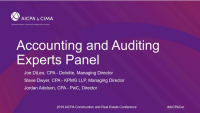 Accounting and Auditing Experts Panel