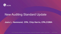 New Auditing Standard Update