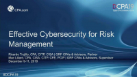 Effective Cybersecurity for Risk Management