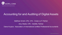 ENG201.15. Accounting for and Auditing of Digital Assets