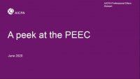 NAA2007. Ethics Update - A Peek at the PEEC