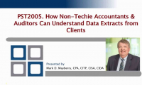 PST2005. How Non-Techie Accountants & Auditors Can Understand Data Extracts from Clients