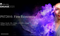 PST2010. Improving Firm Profitability