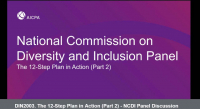DIN2003. The 12-Step Plan in Action (Part 2) - NCDI Panel Discussion