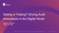 Sailing or Flailing? Driving Audit Innovations in the Digital World