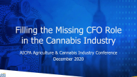 Filling the Missing CFO Role in the Cannabis Industry