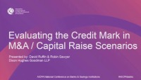 Evaluating the Credit Mark in Mergers and Acquisitions and Capital Raise Scenarios