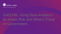 Using Data Analytics to Assess Risk and Detect Fraud In Government