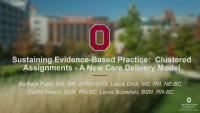 Sustaining Evidence-Based Practice: Clustered Assignments a New Care Delivery Model