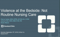 Violence at the Bedside: Not Routine Nursing