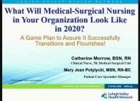 What Will Medical-Surgical Nursing in Your Organization Look Like in 2020? A Game Plan to Assure It Successfully Transitions and Flourishes!