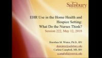 EHR Use in the Home Health and Hospice Setting: What Do the Nurses Think?