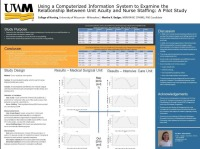 Using a Computerized Information System to Examine the Relationship Between Unit Patient Acuity and Nurse Staffing: A Pilot Study