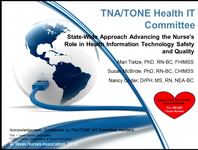 Statewide Approach Advancing the Nurse's Role in Health Information Technology Safety and Quality