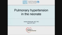 Pulmonary Hypertension in the Neonate