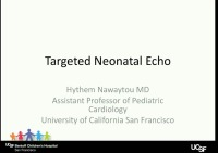 Interventional Cardiology and Targeted Echo
