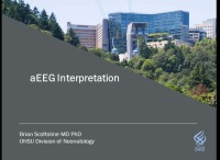 aEEG Interpretation for All!