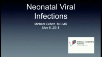 Viral Infections in the Neonate