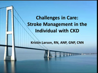 Challenges in Care: Stroke Management in the Individual with CKD