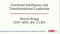 Structures and Practices to Promote and Support Nurse Managers: Emotional Intelligence and Transformational Leadership