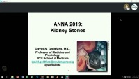 Kidneys Inside and Out: Kidney Stones