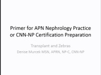Primer for APN Nephrology Practice or CNN-NP Certification Preparation: Transplant and the Zebras (Pregnancy, HIV, TB, Scerloderma, and Hep B/C)