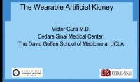 The Wearable Artificial Kidney: Present and Future