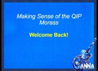 Issues in Management - Making Sense of the QIP Morass Part II