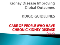Chronic Kidney Disease: KDIGO Guidelines: Update on Newly Published Guidelines and How They Will Guide Practice