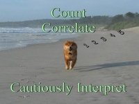Count, Correlate, Then Cautiously Interpret