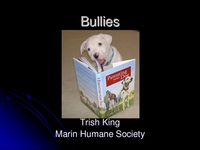 Bully Dogs: Evaluating, Selecting, and Training