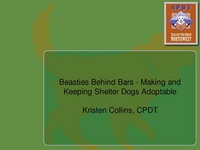 Beasties Behind Bars - Making and Keeping Shelter Dogs Adoptable