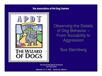 Observing the Details of Dog Behavior - From Sociability to Aggression