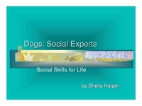Dogs: Social Experts