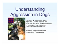 Understanding Aggression in Dogs