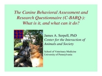 Canine Behavioral Assessment & Research Questionnaire