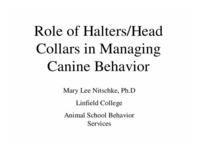 Role of Halters/Headcollars in Managing Canine Behavior