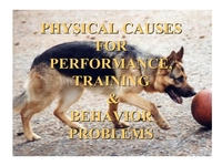 Physical Causes for Performance, Training and Behavior Problems