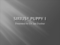 Puppy Class Study - Quantify for Quality