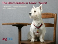 The Best Classes in Town - Yours!