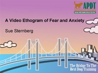 A Video Ethogram of Fear and Anxiety
