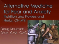 Alternative Medicine for Fear and Anxiety: Nutrition and Flowers and Herbs, Oh My!