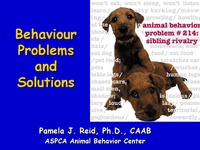 A Dog is a Terrible Thing to Waste: Behavior Problems and Solutions