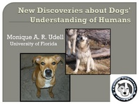New Discoveries About Dogs' Understanding of Humans
