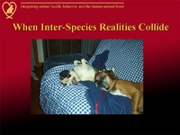 When Human-Canine Realities Collide: Human/Canine Cognition and Emotion as These Relate to Problem Canine Behaviors
