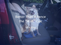 Better Than a Fence - The Wait