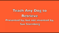 Teach Any Dog to Retrieve